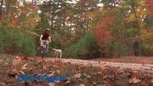 Springer Bike Attachments
